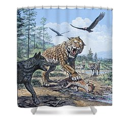 A Pack Of Canis Dirus Wolves Approach Shower Curtain