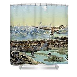 A Pair Of Allosaurus Dinosaurs Explore Shower Curtain