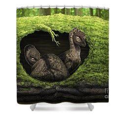 A Pair Of Juvenile Troodons Shower Curtain by Alvaro Rozalen