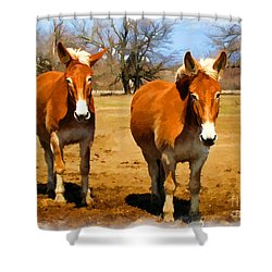 A Pair Of Mules  Digital Paint Shower Curtain