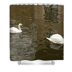 A Pair Of Swans Bruges Belgium Shower Curtain by Imran Ahmed
