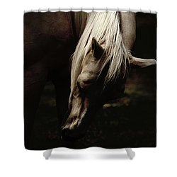 A Pale Horse Shower Curtain