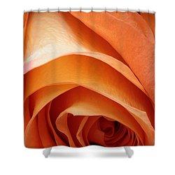 A Pareo Rose Shower Curtain by Joe Kozlowski