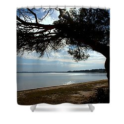 A Park With Tranquil Moments Shower Curtain by Debra Forand