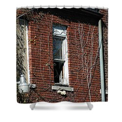 A Past Shower Curtain by Joseph Yarbrough