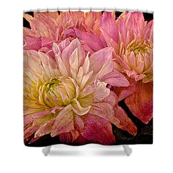 A Pastel Bouquet Shower Curtain by Chris Lord