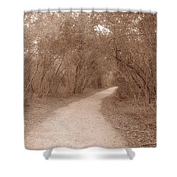Shower Curtain featuring the photograph A Path In Life by Beth Vincent