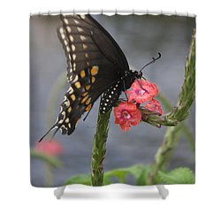 A Pause In Flight Shower Curtain