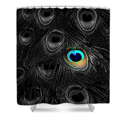 A Peacock Feather Shower Curtain by Mike Nellums