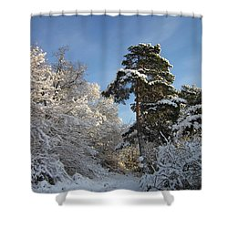 A Perfect Winterday Shower Curtain