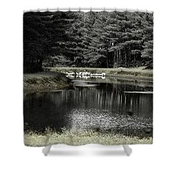 A Pond Shower Curtain