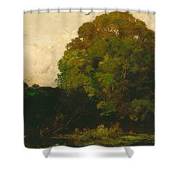 A Pond In The Morvan Shower Curtain by Charles Francois Daubigny