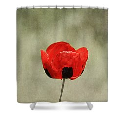 A Pop Of Red And Black Shower Curtain by Kim Hojnacki