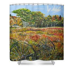 A Prairie Treasure Shower Curtain by Marilyn  McNish