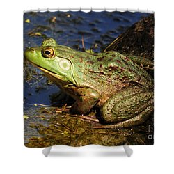 A Prince Of A Frog Shower Curtain by Kathy Baccari