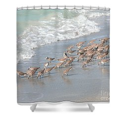 A Quick Bite Shower Curtain by Mariarosa Rockefeller