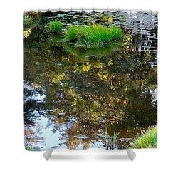 A Quiet Little Pond Shower Curtain by Ira Shander