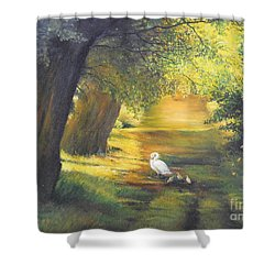 A Ray Of Sunshine  Shower Curtain
