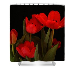 A Red Tulip Day Shower Curtain