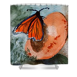 A Resting Place Shower Curtain by Beverley Harper Tinsley