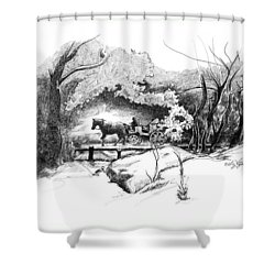 A Ride Through Central Park Shower Curtain