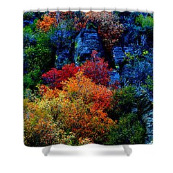 A Riot Of Color Shower Curtain
