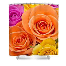 A Riot Of Roses Shower Curtain by Anne Gilbert