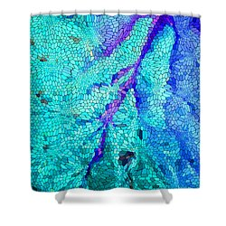 A River Runs Through It Shower Curtain by Mariarosa Rockefeller