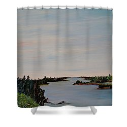 Shower Curtain featuring the painting A River Shoreline by Marilyn  McNish
