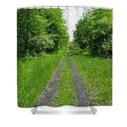 A Road Painted - Digital Painting Effect Shower Curtain by Rhonda Barrett