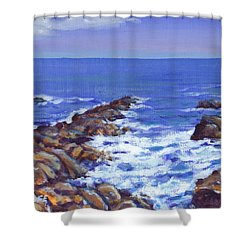 A Rocky Coast Shower Curtain