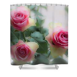 A Rose And A Rose And A Rose Shower Curtain
