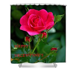 A Rose For Valentine's Day Shower Curtain by Mariarosa Rockefeller