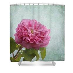 A Rose Shower Curtain by Kim Hojnacki