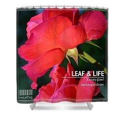 A Rosey Glow In Annasgardens Shower Curtain