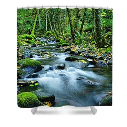 A Small Song In The Big Beauty Shower Curtain by Jeff Swan