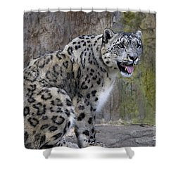 Shower Curtain featuring the photograph A Snow Leopards Tongue by David Millenheft