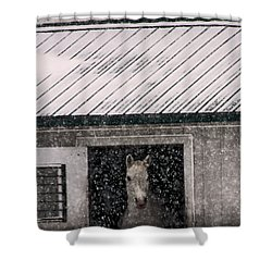 A Snowfall At The Stable Shower Curtain by Bruce Patrick Smith