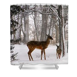 A Snowy Path Shower Curtain