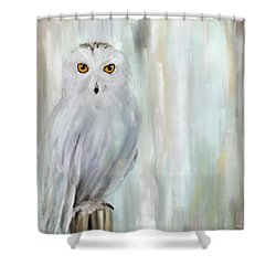 A Snowy Stare Shower Curtain