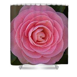 A Soft Blush Shower Curtain