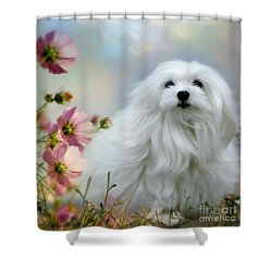 A Soft Summer Breeze Shower Curtain