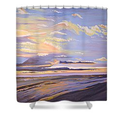A South Facing Shore Shower Curtain by Donna Blossom