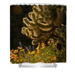 A Southwestern Spring  Shower Curtain