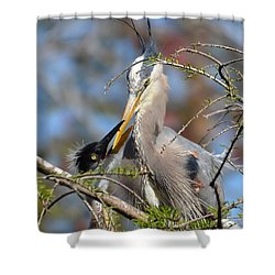 A Special Moment Shower Curtain by Kathy Baccari