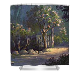 A Special Place Shower Curtain by Michael Humphries