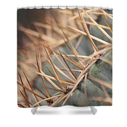 A Spiny Situation Shower Curtain by Amy Gallagher
