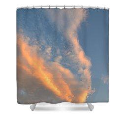 A Splash Of Peach Shower Curtain