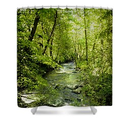 A Spring Day At Lithia Creek Shower Curtain by Diane Schuster