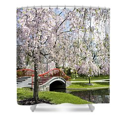 A Spring Walk Shower Curtain